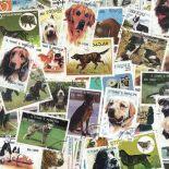 Collezione di francobolli cani cancellati
