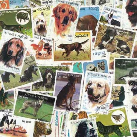Hunde: 100 verschiedene Briefmarken