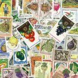 Collezione di francobolli frutta cancellata