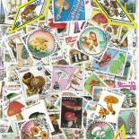Collezione di francobolli funghi cancellati