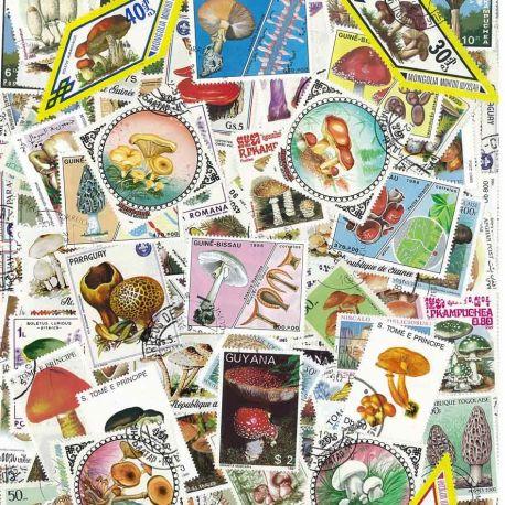 Champignons : 100 timbres différents
