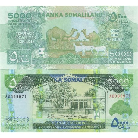 Billets de collection Billets banque Somaliland Pk N° 21 - 5000 Shillings Billets du Somaliland 10,00 €