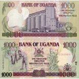 Billets collection Ouganda Pk N° 36 - 1000 Shillings