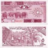 Banknote collection Somalia Pick number 31 - 5 Shilling