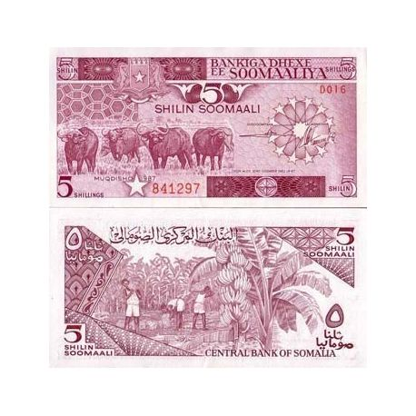Somalie - Pk N° 31 - Billet de 5 Shillings
