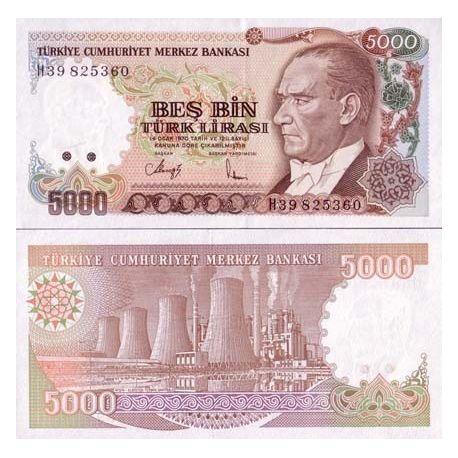 Billets de collection Billets de banque Turquie Pk N° 198 - 5000 Lira Billets de Turquie 3,50 €