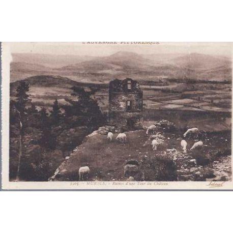 03 - Murols - Ruines d'une tour du chateau