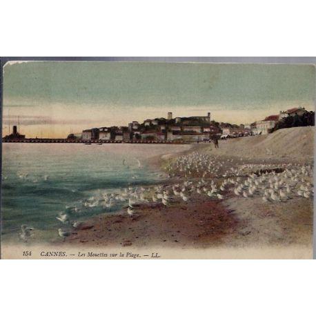 06 - Cannes - Les mouettes sur la plage - Voyage - Dos divise...
