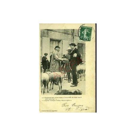 Carte postale 16 - ANGOULEME - DEUX PAYSANS AU MARCHE