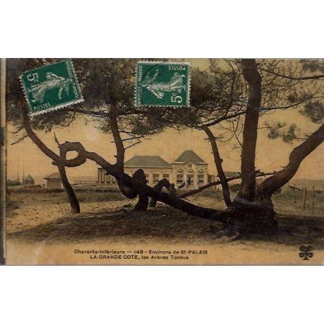 17 - Environs de St-Palais - la grande cote - les arbres tordus - Voyage - D...