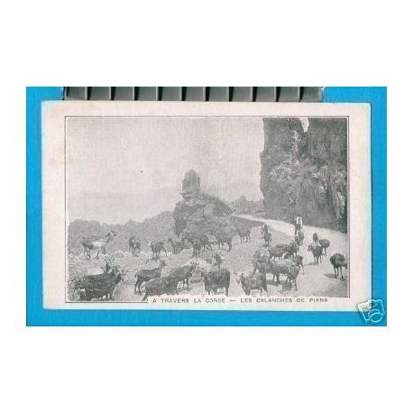 Carte postale 20 - BREBIS DANS LES CALANCHES DE PIANA