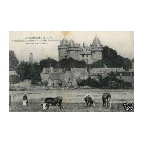 35 - Combourg - Chateau et paturage