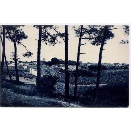 Carte postale 40 - La tranche-sur-Mer - Vue des bois de Pins - Voyage - Dos divise
