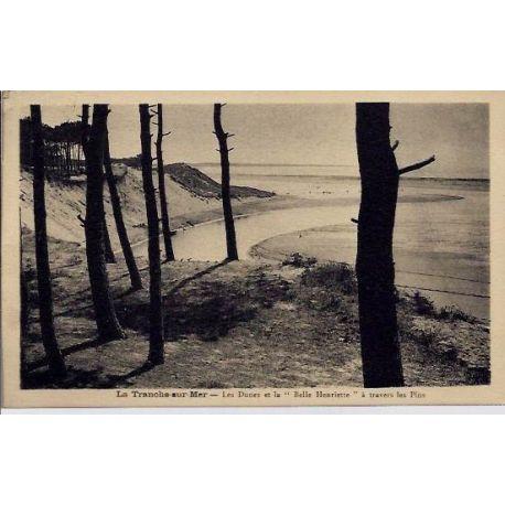 Carte postale 40 - La tranche-sur-Mer -Les dunes et la belle Henriette a travers les Pins -