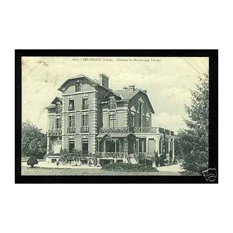 Carte postale 45 - Les Choux - Chateau du moulin aux lievres