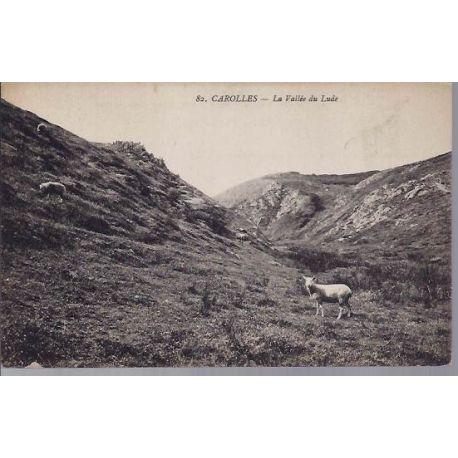 Carte postale 50 - Carolles - La vallee du Lude - Agneaux