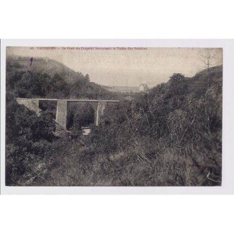 Carte postale 50 - Carolles - Le pont du Crapeux traversant la vallee des Peintres - Voyage