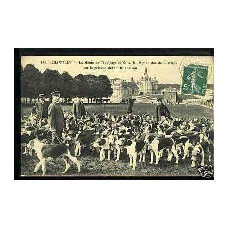 Carte postale 60 - Chantilly - La meute de l'equipage de S.A.R....