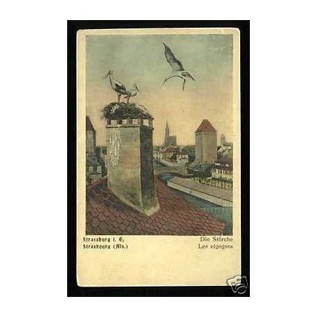 Carte postale 67 - Strasbourg - Les cigognes au nid
