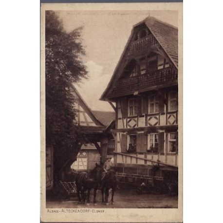 68 - Alsace - Alteckendorf - Elsass - Chevaux devant une maison -Non voyage -