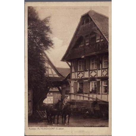 Carte postale 68 - Alsace - Alteckendorf - Elsass - Chevaux devant une maison -Non voyage -