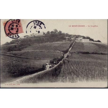 Carte postale 69 - Le Mont-Cindre - Le Grapillon