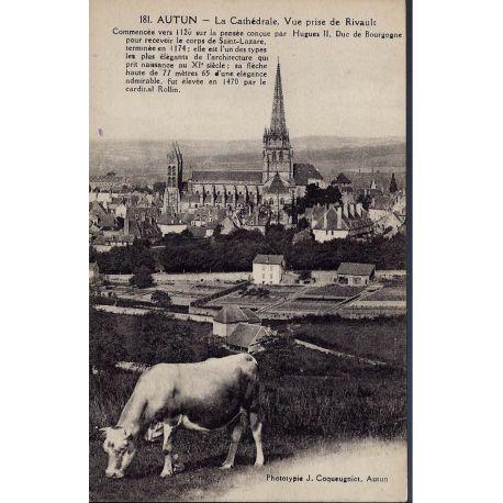 Carte postale 71 - Autun -La cathedrale prise de Rivault - Vache