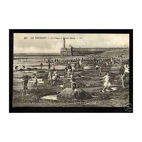 76 - Le Treport -La plage a maree basse -Enfants jouant