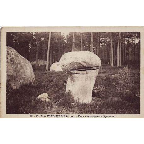 77 - Fontainebleau - La foret - Le faux champignon d'Apremont - Non voyage - D