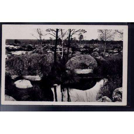 77 - Fontainebleau - la foret Gorges d' Apremont - la mare aux biches - Non