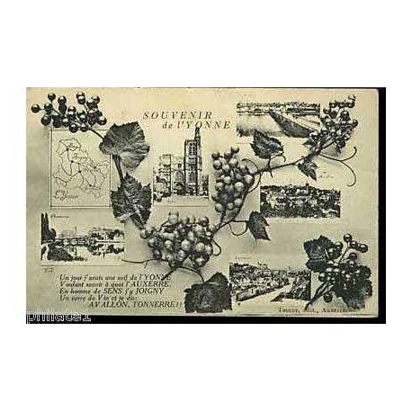89 - Souvenir de l'Yonne - Vigne - Multivue