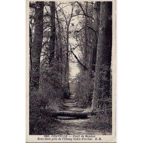 Carte postale 92 - Chaville - Foret de Meudon - sous-bois pres de l'etang colin-Porcher - Do