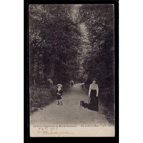 Carte postale 94 - Bois de Vincennes - Une allee du Bois - Voyage - Dos non divise