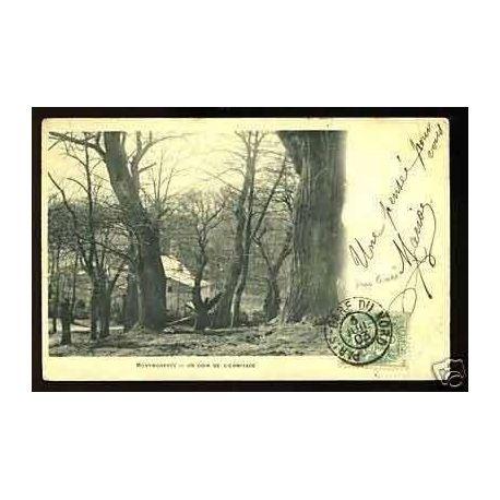 Carte postale 95 - Montmorency - Un coin de l'ermitage