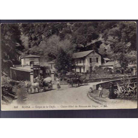 Algerie - Blida - Gorges de la Chiffa - Chalet Hotel du ruisseau des singes - Caleches - Animee