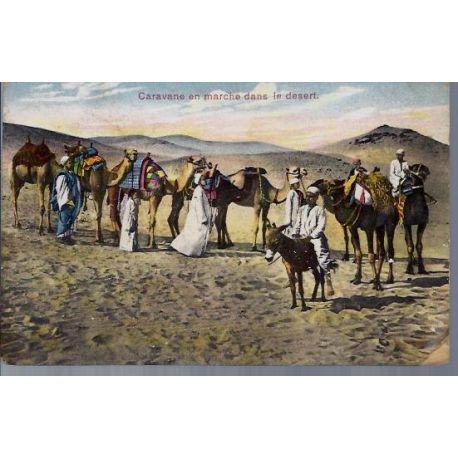 Egypte - Caravane en marche dans le desert