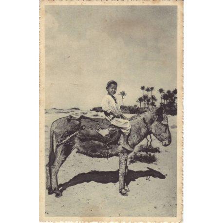 Egypte - Enfant sur son ane