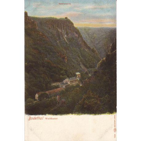 Allemagne - Bodethal - Waldkater