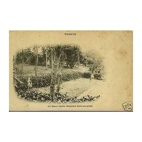 Tonkin hanoi jardin botanique parc aux grues for Jardin indochine