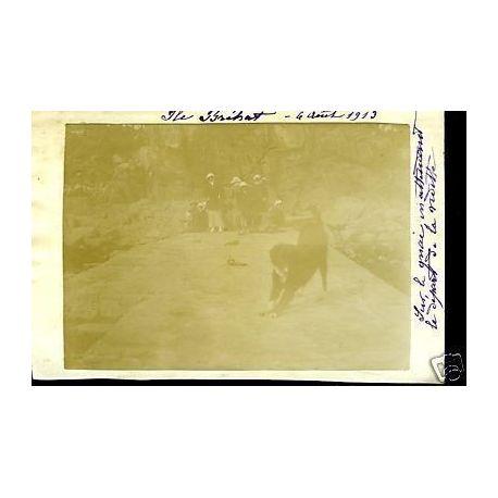 Carte-photo - Ile Brehat - Les quais (22) - 1913
