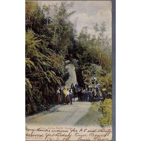Nelle Zelande - Fern Arch - Buller Gorge