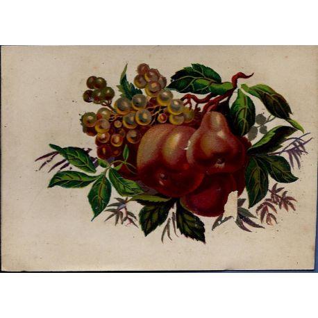 Chromo - Fleurs et fruits I - Bon etat - 9 cm x 13 cm