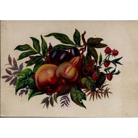 Chromo - Fleurs et fruits III - Bon etat - 9 cm x 13 cm