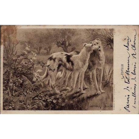 2 Barzoïs - L'Idylle par Stanley Berkele - 1904