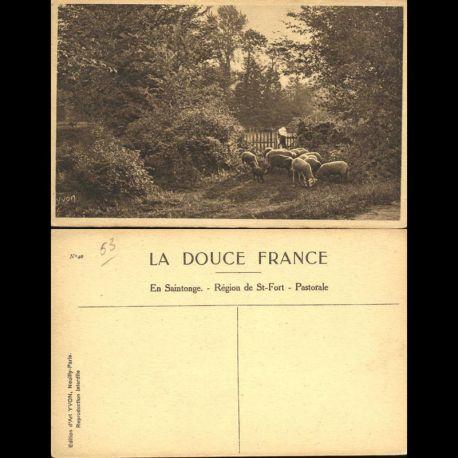 Carte postale 53 - En Saintonge - Région de Saint Fort - Pastorale