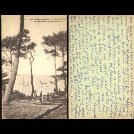56 - Ile aux moines - Le bois d'amour et vue sur le golfez