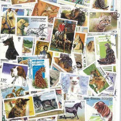Collection de timbres Animaux Domestiques oblitérés