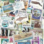 Collezione di francobolli animali polari cancellati