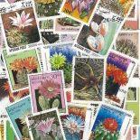 Gestempelte Briefmarkenensammlung Kakteen