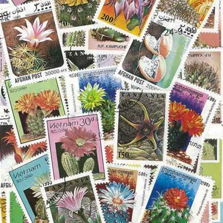 Collection de timbres Cactus oblitérés